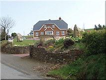 S9619 : House with daffodils, near Coolstuff Cross Roads by David Hawgood