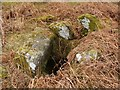 NS4279 : Cist (a close-up view of the chamber) by Lairich Rig