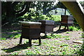 SX5155 : Beehives at Saltram by jeff collins