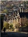 SX8571 : Knowles Hill Road, Newton Abbot : Week 14