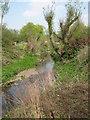SP0378 : River Rea Looking Towards Wychall Road Bridge. by Roy Hughes