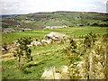 SE0124 : Thymely Bent Barn by Alexander P Kapp