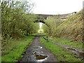 SE2102 : Ecklands bridge crosses the Trans Pennine Trail by Steve  Fareham