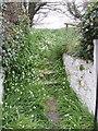 T0624 : Steps to cemetery at Ardcavan by David Hawgood