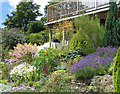SX3057 : The garden at The Brambles, Church Lane, Hessenford by STEVE POVEY