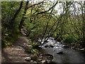 SS6548 : River Heddon by Derek Harper