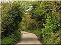 SW7941 : Lane at Chycowling by Derek Harper