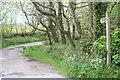 SW4030 : Bridleway leading to Botrea by Rod Allday