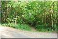 TQ6038 : Footpath junction , High Wood by N Chadwick