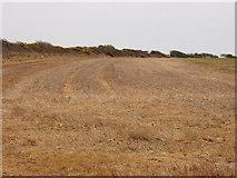 S9704 : Field of stubble near Kilmore Quay by David Hawgood