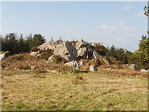 S9618 : Rock outcrop on Forth Mountain by David Hawgood