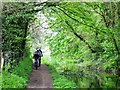 SP8811 : Wendover Arm; Cycling along the Canal Towpath by Chris Reynolds