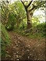 SW7443 : Bridleway near Cox Hill by Derek Harper