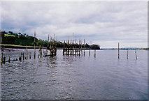 S6613 : Fish trap, Drumdowney, Co. Kilkenny by Kieran Campbell