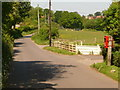 SY9394 : Lytchett Matravers: postbox № BH16 245, Middle Road by Chris Downer