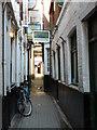 SP5106 : Oxford - Alleyway : Week 22
