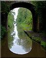SJ7030 : The canal at Cheswardine Bridge, Shropshire : Week 21