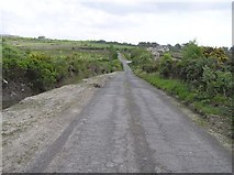 C5335 : Road at Condrum Rocks by Kenneth  Allen