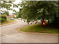 SY4793 : Bradpole: postbox № DT6 111, Lee Lane by Chris Downer