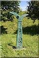 NJ3364 : Millennium Milepost by Anne Burgess