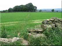 SE1611 : Footpath at Farnley Moor by Chris Wimbush