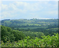 ST6365 : 2009 : South from the top of Publow Hill by Maurice Pullin