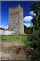 W5849 : Castles of Munster: Kilgobbin, Cork by Mike Searle