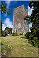 W9393 : Castles of Munster: Conna, Cork by Mike Searle