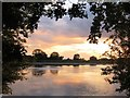 SP9113 : Sunset over Startops Reservoir, Near Tring by Chris Reynolds