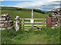 NY7205 : An odd pair  of gateposts by Stephen Craven
