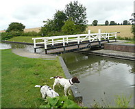 SU0662 : Pippa and Lulu explore the  Allington swing bridge by Russel Wills