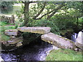 SE0140 : Clapper bridge by John Illingworth