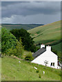 SN7553 : More rain approaching the Doethie, Ceredigion : Week 29