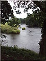SD7138 : River Hodder meets River Ribble by Cary O'Donnell