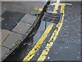 ST5773 : Cast Iron Kerb, Clifton, Bristol by Nigel Mykura