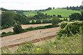 ST7559 : Wellow: near Twinhoeford Wood by Martin Bodman