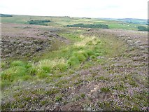 SD9922 : Moorland stream, Higher House Moor, Mytholmroyd by Humphrey Bolton