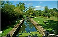 TQ0630 : Drungewick Lock, looking north, Wey & Arun Canal : Week 33