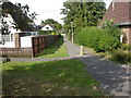 SZ0596 : Bearwood, footpath by Mike Faherty