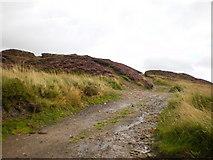 SE0027 : Track over Little Moor by Alexander P Kapp