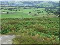 SE0847 : Hillside towards Crag House by Chris Wimbush