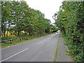 TL2938 : Station Road, Odsey, Cambs by Christine Matthews