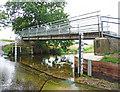 TL1763 : Footbridge, Hail Weston Ford by Christine Matthews