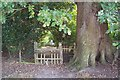 TQ7039 : Broken Stile on High Weald Landscape Trail by David Anstiss