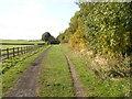 SE2403 : Trans Pennine Cycle Trail near Penistone by SMJ
