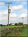 TL6484 : Electricity poles beside the A1101 (Mildenhall Road) by Evelyn Simak