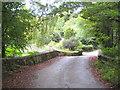 SW8750 : Bridge over the stream below Kestle Farm by Rod Allday