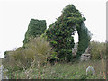 TF6626 : The ruined church of St Felix - viewed from the south-east by Evelyn Simak