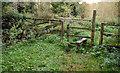 J3369 : Stile, Belvoir forest, Belfast (1) by Albert Bridge