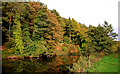 J3369 : The River Lagan, Belvoir, Belfast by Albert Bridge